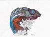 Chameleon 2 von Remo Scan0002#003