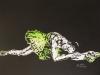 295.Ballerina-grand-plie-58x41